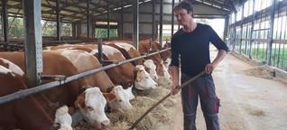 """""""Das ist kein Ponyhof, das ist Landwirtschaft"""""""