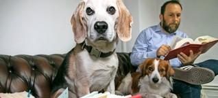 Kann Kollege Hund einen Burn-out verhindern?