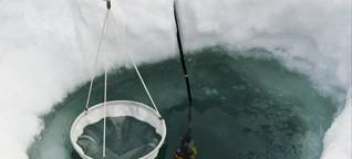 Bergseen : Wie der Klimawandel sie verändert - gut zu wissen, BR