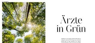 Aromatherapie: ätherische Baum-Öle