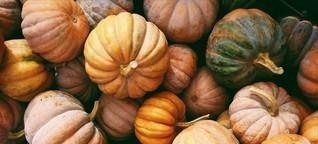 Saisonkalender für Oktober: Das könnt ihr jetzt regional kaufen und essen