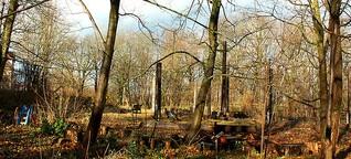 Wolfsherz - ein Garten für alle