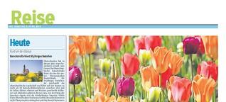 Keukenhof, Niederlande: Blumen, Blumen, Blumen