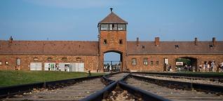 Henry Hafenmayer: Holocaustleugner inszeniert sich vor Gericht