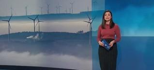 Studiogespräch tagesschau24: Nachhaltige Geldanlagen