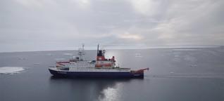 Luftpulser und Eiserkundung - Woche 3 auf Polarstern