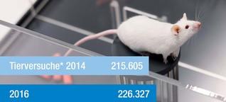Statistiken: Die meisten Tierversuche gibt es in der Region Karlsruhe