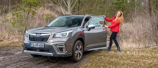 Der Subaru Forester e-Boxer könnte Försters neuer Liebling werden