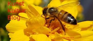 Insekt: Biene aus München