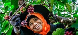 Nestlé-Kaffee: Die Blockchain verfolgt den Kaffee zurück