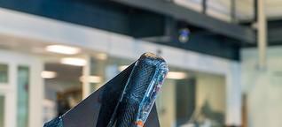 DLF  Forschung aktuell: Der Flugfisch-Roboter