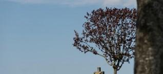 Biodiversität auf Friedhöfen - Ruhe für die Toten, Leben für die Natur