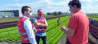Europa-Reportage   19.7.2020 : Abgezockt? Rumänische Erntehelfer auf deutschen Feldern