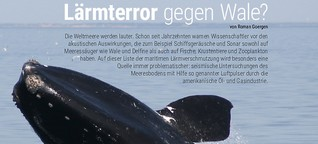 Lärmterror gegen Wale?