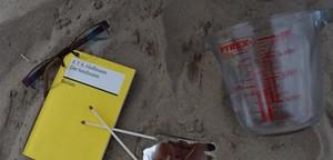 Folge 7: Der Sandmann by LiteraturkABInett
