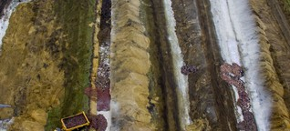Dänemark: Verdacht auf Grundwasserverschmutzung wegen Corona-Nerzen