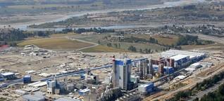 Zellulose aus Chile - Unser Papier schädigt ihre Umwelt