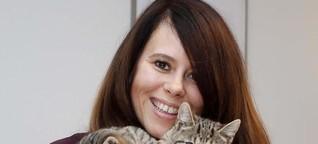 Trostspender Quarantier: Der Run auf Katzen, Welpen und Kaninchen