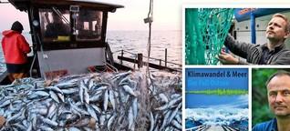 Zwischen Klimawandel und Fischerei: Ostseefische unter doppeltem Druck
