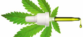 Cannabis soll im Kampf gegen Corona helfen