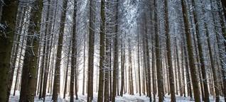 Darum glauben wir an den Mythos weiße Weihnachten