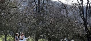 Wetter im April 2021: Weihnachten im Schnee – Ostern im Klee