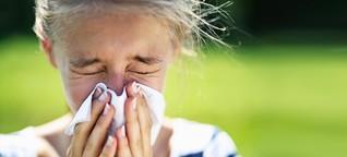Warum werden in Berlin noch Birken gepflanzt?: Eine Pollen-Allergikerin schlägt zurück