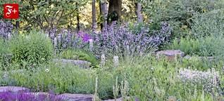 Die Harten für den Garten