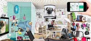 Der Hund als Readymade oder unser erster veritabler Kunstweltcrush