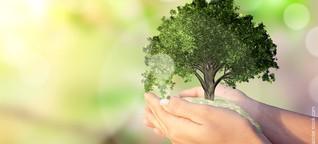 Fonds und ETFs: Darum ist ESG ein echter Renditetreiber für Ihr Depot