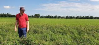 Wie Start-ups und Brandenburger Bauern den Umweltschutz voranbringen
