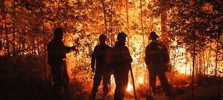 In Russland brennen Millionen Hektar Wald