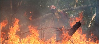 Russland: Waldbrände im Osten, Überschwemmungen im Süden