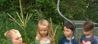 Kinder ackern für das eigene Gemüse