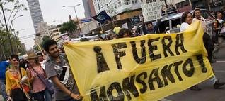 Bayer contra México: ¿glifosato o libre comercio?