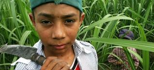 Kinderarbeit weltweit - Fragen und Antworten