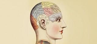 Mentale Landkarten - Wie das Gehirn unsere sozialen Beziehungen verarbeitet