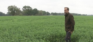 Wenn die Ackerfläche zum Solarfeld umfunktioniert werden soll